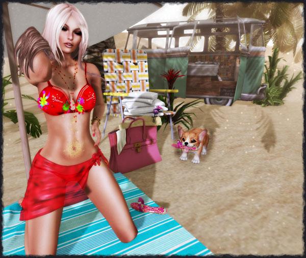 beach1b_001-copyipiccmune
